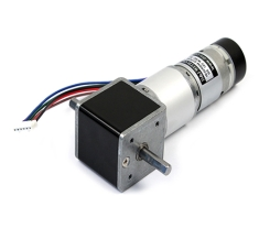 IG-32RGM 01TYPE (12V) with 2channel Encoder - DS