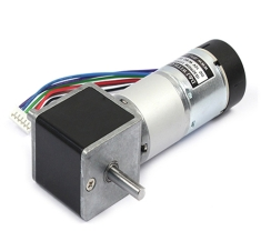 IG-32RGM 11TYPE (12V) with 2channel Encoder - DS
