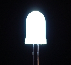 Diffused White 10mm LED (25 pack) [846]